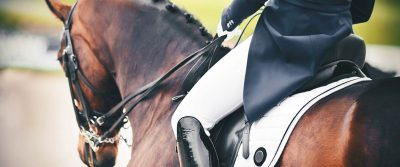 Equestrian Business Insurance